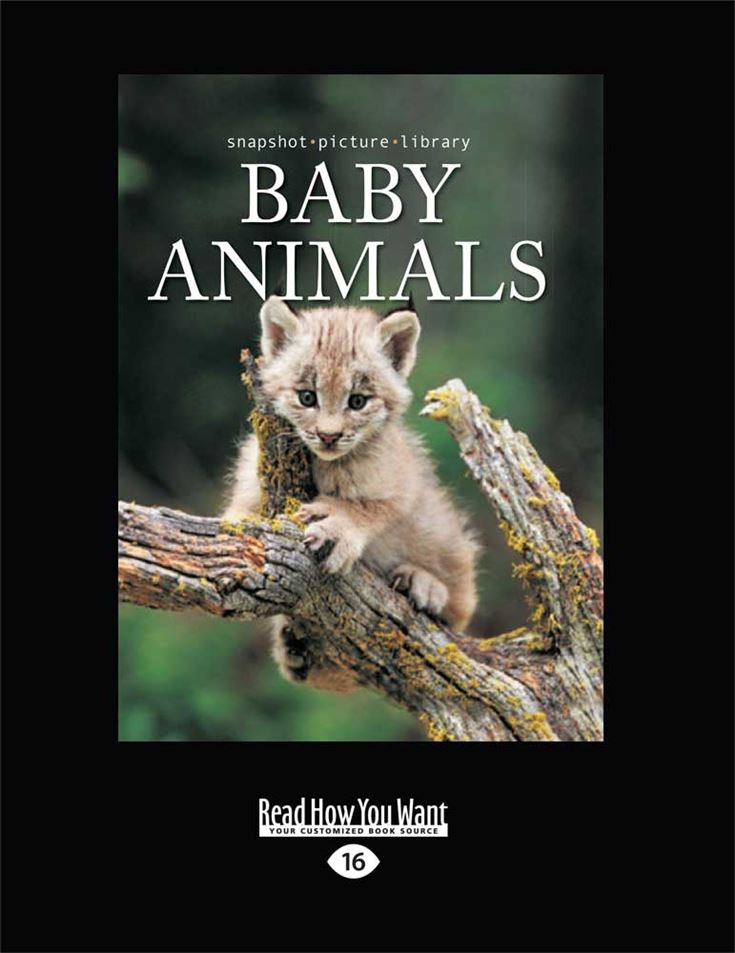 Snapshot Picture Library: Baby Animals