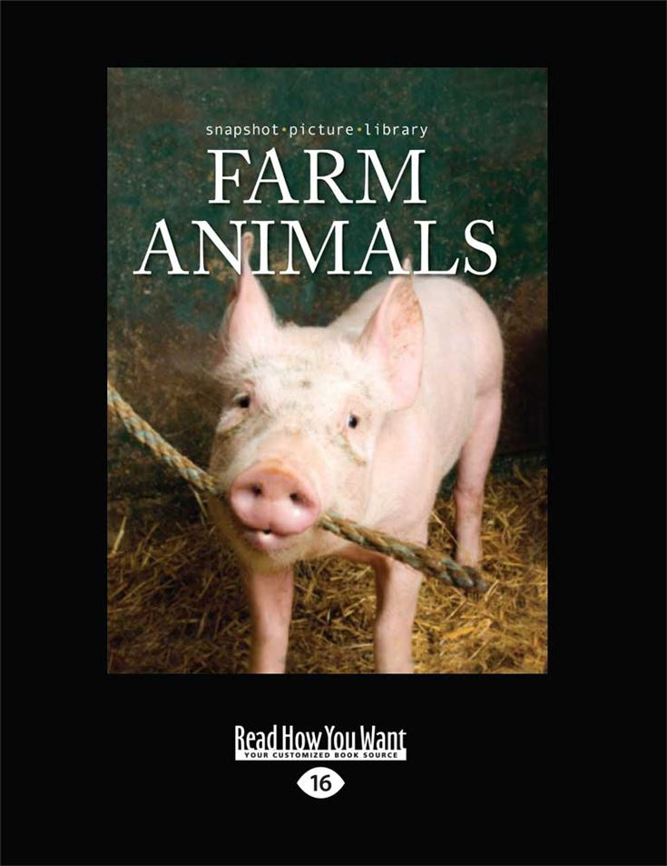 Snapshot Picture Library: Farm Animals