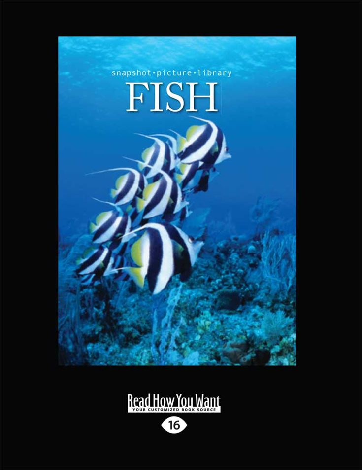 Snapshot Picture Library: Fish