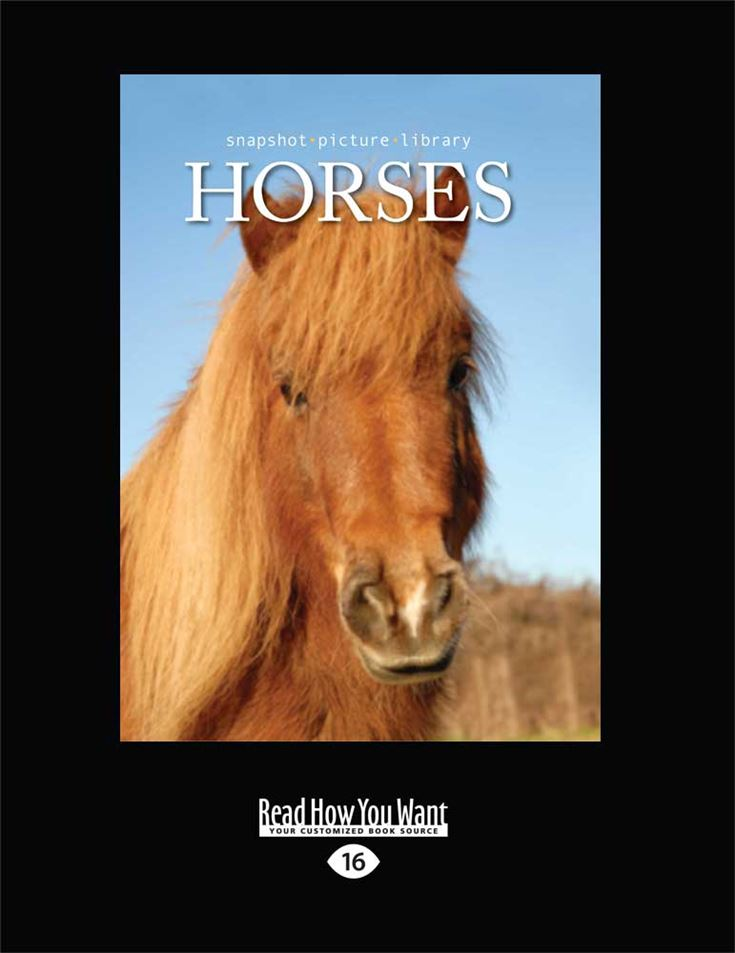 Snapshot Picture Library: Horses