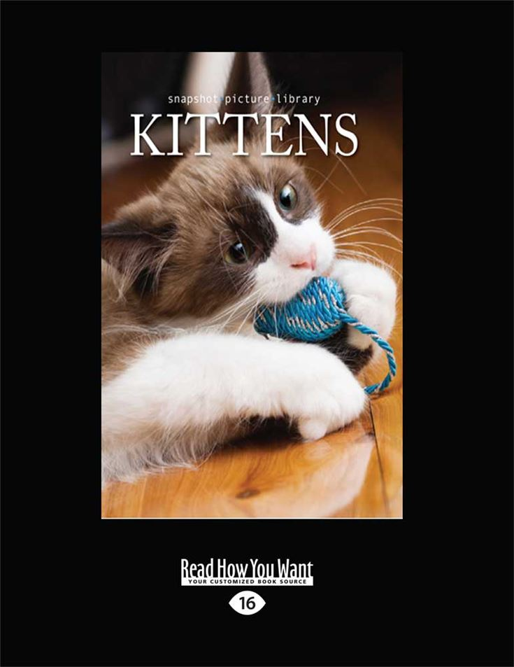 Snapshot Picture Library: Kittens