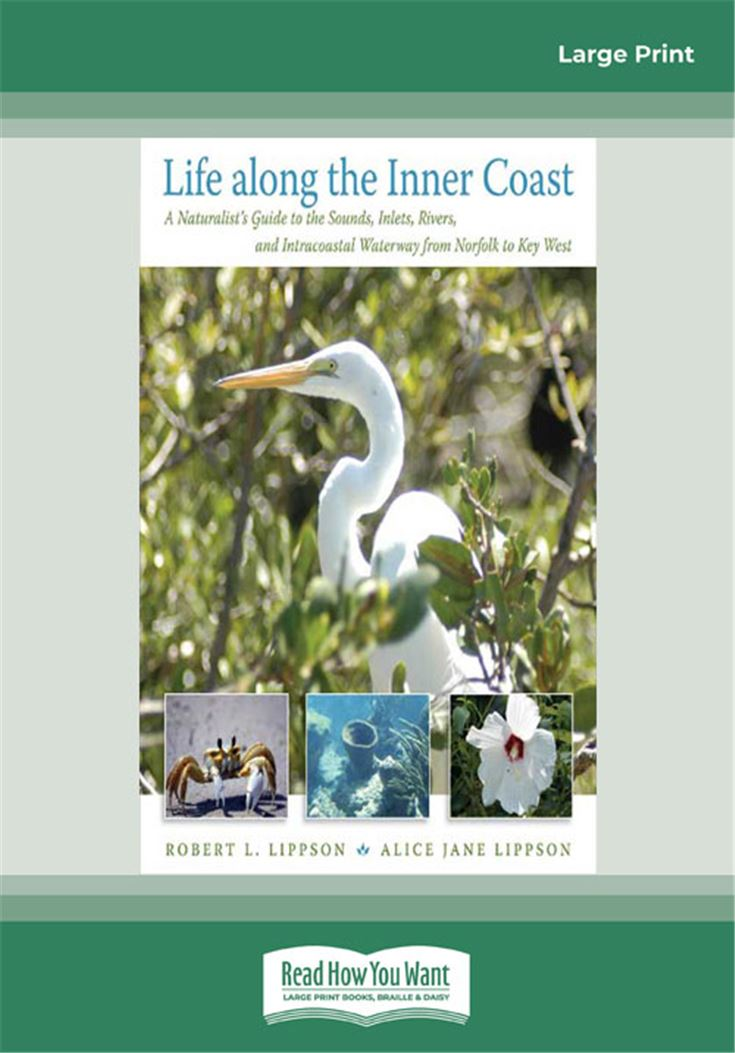 Life along the Inner Coast