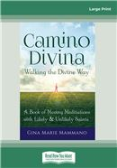 Camino Divina—Walking the Divine Way