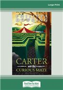 Carter and the Curious Maze